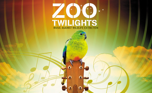 twilights-2012-13-v1-web620
